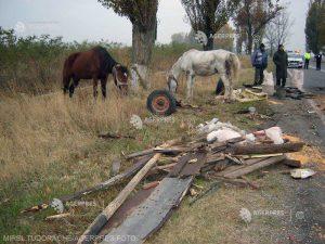 Opt persoane aflate într-o căruţă, rănite într-un accident
