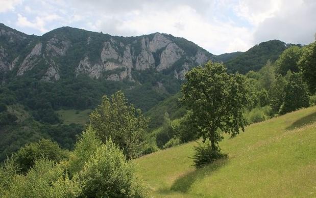 Zonele montane vor putea să acceseze mecanismul financiar europe