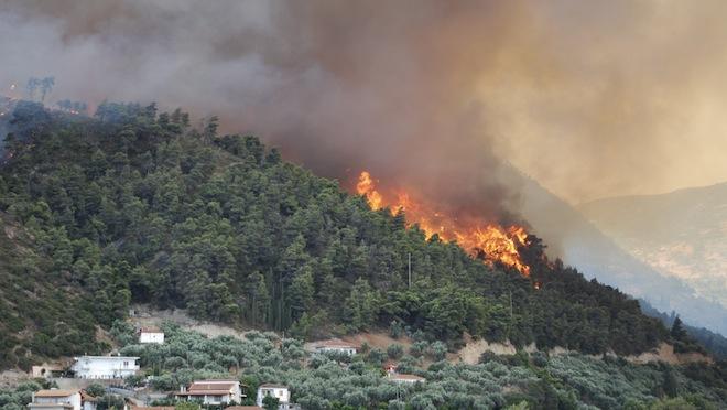 Posibilul autor al unui incendiu care a distrus 130 de hectare de pădure, identificat după un an