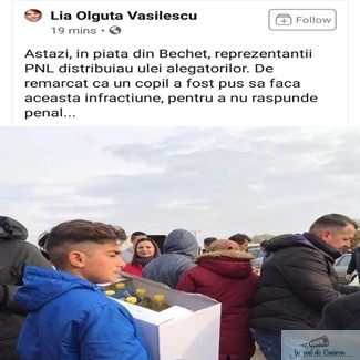 Stefan Stoica, presedintele PNL Dolj : Olguta Vasilescu recidiveaza!