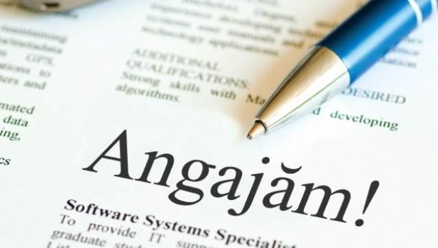 Locuri de muncă disponibile pentru bugetari în județul Neamț