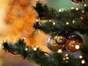Mesajul de Crăciun al Primăriei Cristian