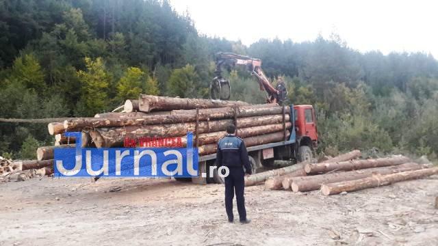 Amenzi și confiscări de material lemnos în urma unor controale în domeniul silvic