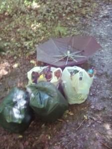 """Un sibiana adunat gunoaiele lăsate în pădure de tineri. """"A"""
