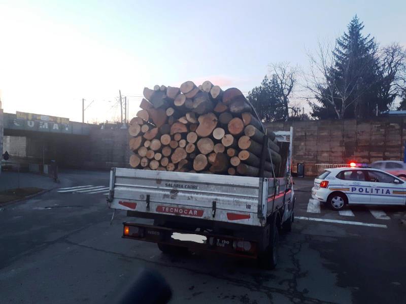 Amenzi și lemne confiscate în urma unor acțiuni desfăşurate de poliţiştii vrânceni