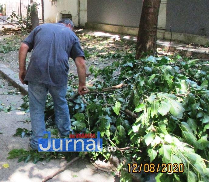 Nici o faptă bună nu rămâne nepedepsită! Amendat de poliția locală pentru că a curățat un copac din fața blocului!