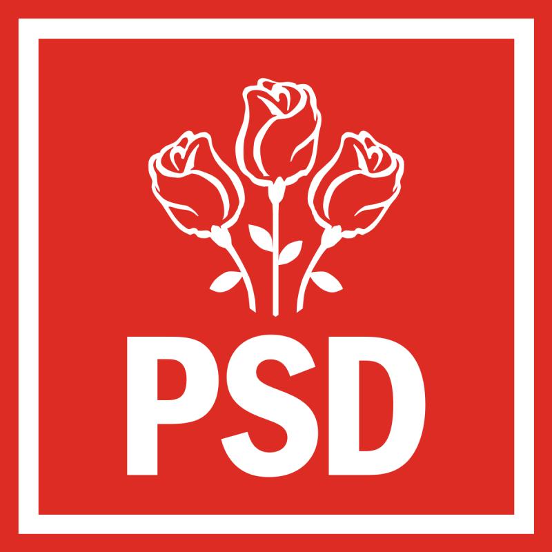 PSD și-a desemnat candidații la alegerile parlamentare