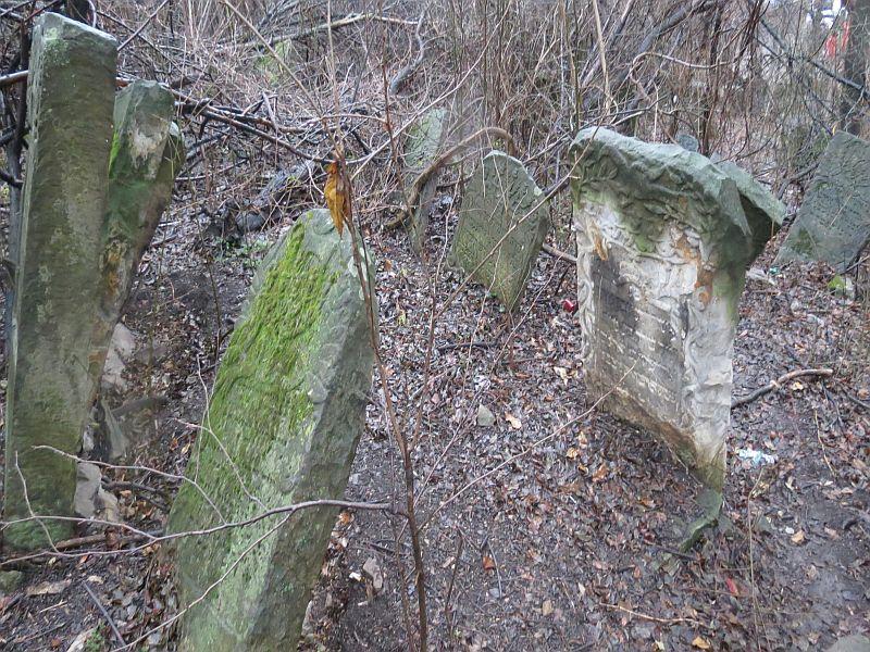 Cimitirele evreie?ti din Piatra-Neam?: file din istoria unei comu