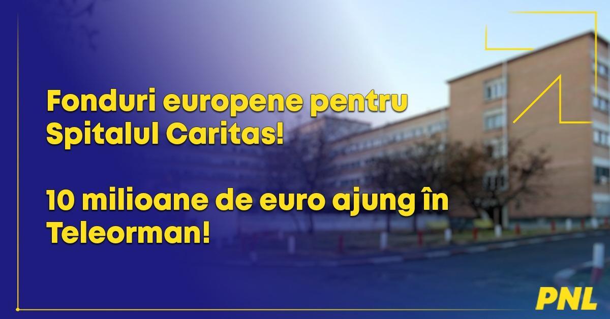 """Senator Eugen Pîrvulescu: """"10 milioane de euro ajung în Teleo"""