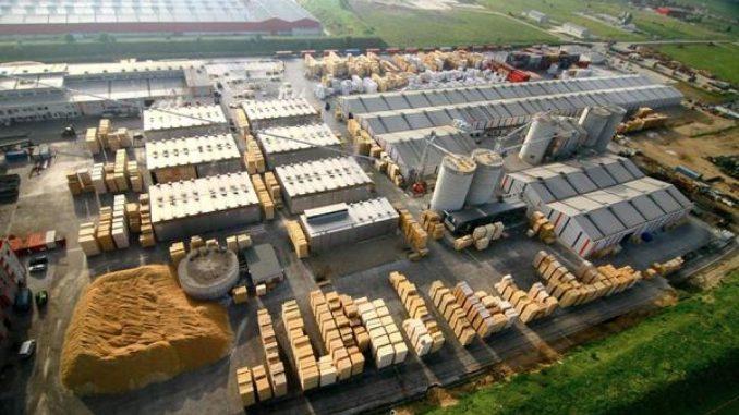 Schweighofer continuă practicile ilegale: lemn tăiat ilegal din