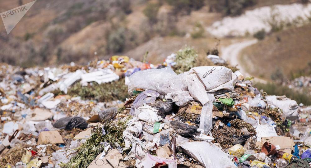 România, groapa de gunoi a Occidentului